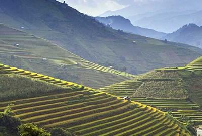 Cheap Holidays to Vietnam 2019/2020 | Vietnam Holidays